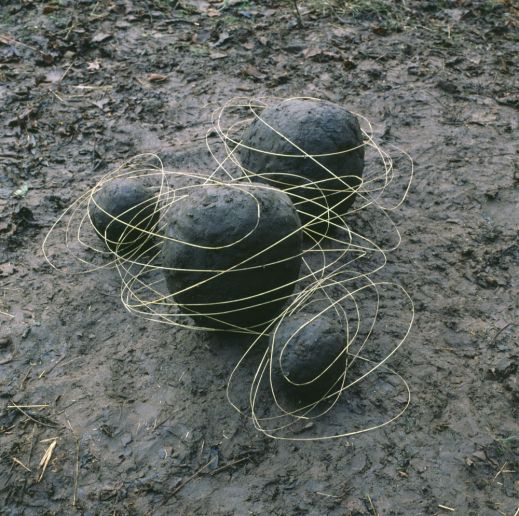 Andy Goldsworthy landscape
