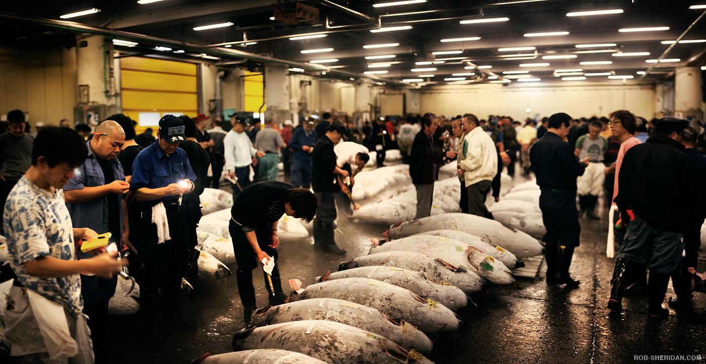 Tsukiji fish market by rob sheridan iconology for Japan fish market